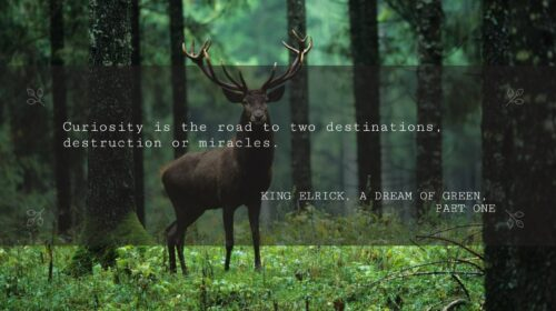 Curiosity is the road to two destinations, destruction or miracles
